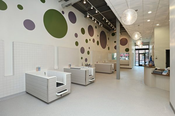 Bubbly-Paws-MG3_U-plus-B-Architects_Minneapolis